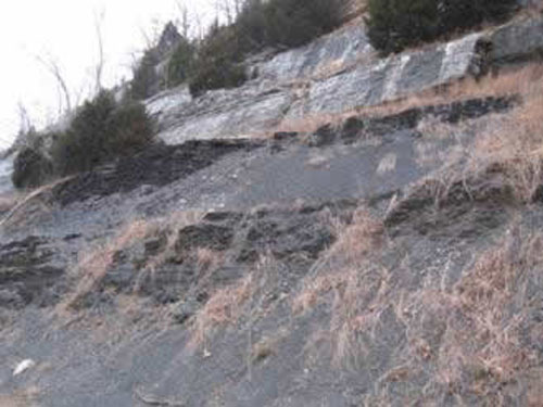 Chattanooga Shale at Bella Vista Arkansas.   Approximately 30-40 ft. exposed.   The St. Joe Limestone Member of the Boone Formation is present above the  Chattanooga Shale.