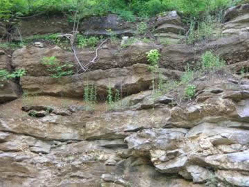 Hindsville Member (upper half of picture), consisting of a conglomeratic limestone, above the cherty Boone Limestone